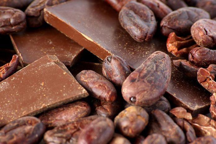 cacao e cioccolato fondente