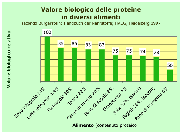 Proteine Negli Alimenti Tabella E Valore Biologico